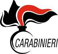 logo carabinieri190n